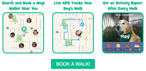 how to become a wag walker wag on demand walking 171 the allmyfaves expert reviews about cool new