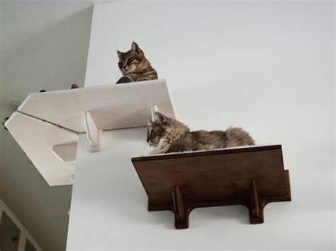 Corner Cat Shelf by Wooden Corner Cat Shelf Made In Italy Athleticat Net