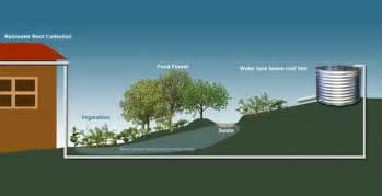 Water Tanks in the Urban Garden   Ecofilms