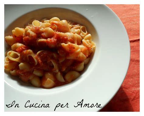 salsa pomodoro fatta in casa conchiglie con salsa di pomodoro fatta in casa in cucina