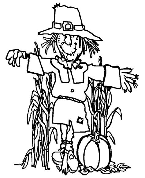 pumpkin scarecrow coloring pages scarecrow color pages scarecrow against birds adult