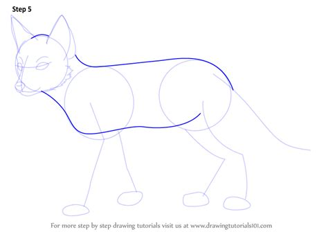 swift fox coloring page step by step how to draw a swift fox drawingtutorials101 com