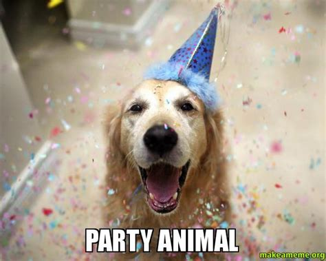 Party Animal Meme - party animal make a meme