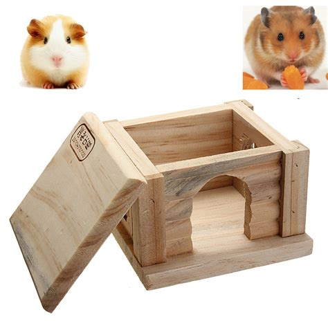 hamster bedroom hamster bedroom 28 images hamster bedroom 28 images
