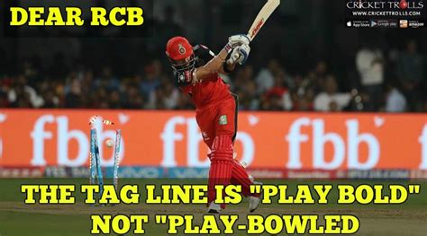 Rcb Memes - ipl 2017 common rcb play bold crickettrolls com