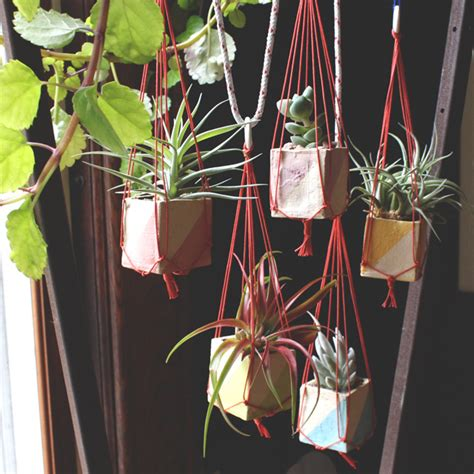 small hanging plants mini hanging planters