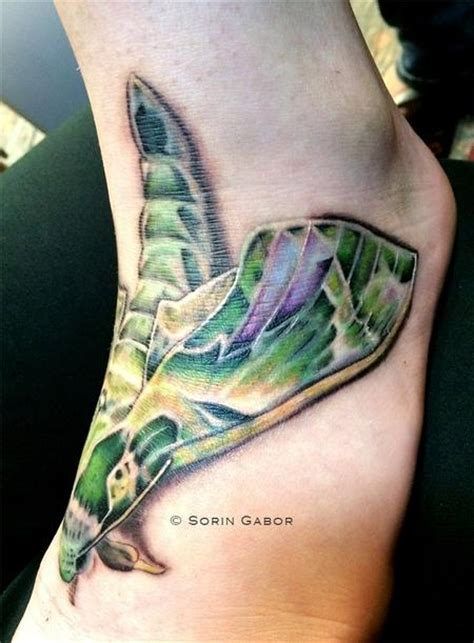 sugar city tattoo sorin gabor at sugar city nature animal wildlife