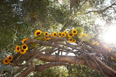 imagenes de uñas girasoles confesiones de una boda flores de boda v 5 los girasoles