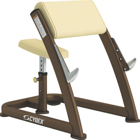 scott curl bench scott curl cybex
