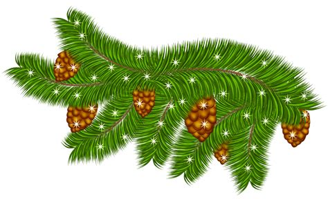 Branch Decorations For Home by Pine Cone Branch Clip Art 85