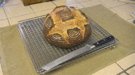 125 hydration starter bread of the year the fresh loaf