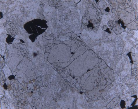 apatite thin section dr tobias weisenberger