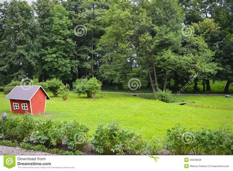 forest backyard backyard forest children house stock photo image 49338626