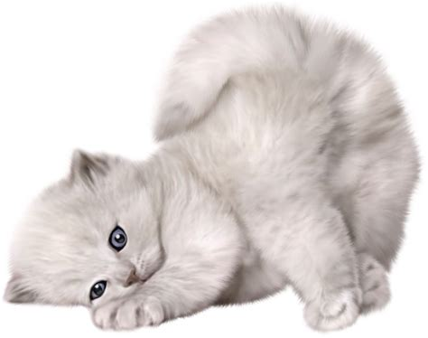 google images kittens png transparent dog recherche google png chat