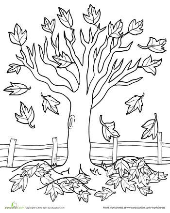 autumn cartoon coloring pages maple tree coloring page coloring thanksgiving and