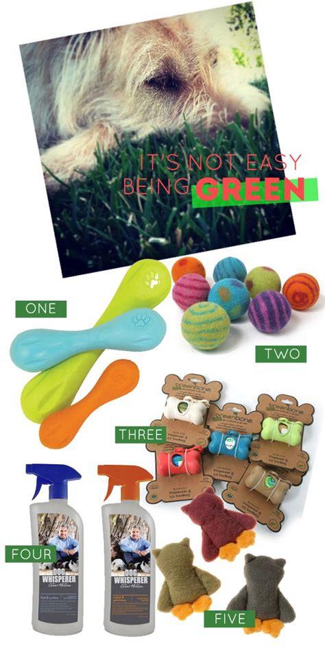 eco friendly dog house eco friendly dog products via house of harvey pinx pets