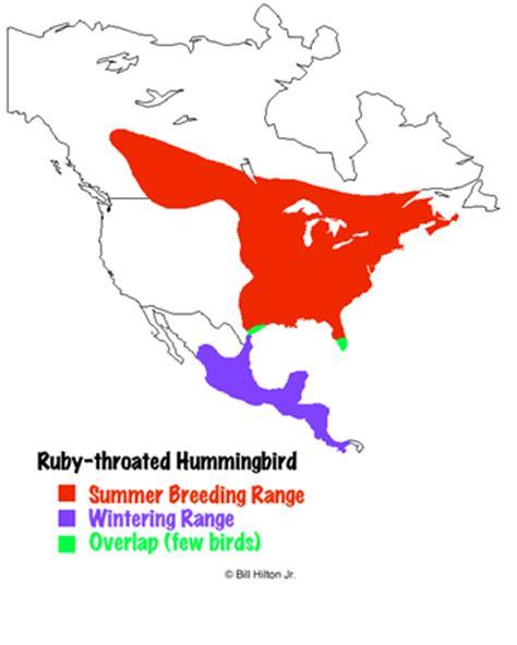 hummingbird distribution winter summer
