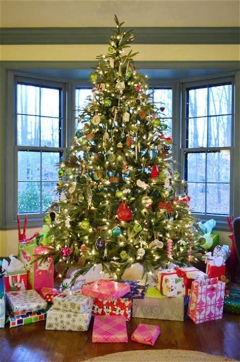 christmas tree photo portraits holiday gifts  good stuff young house love
