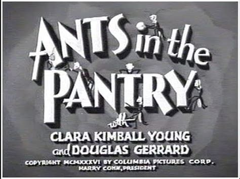Ants In The Pantry by The Three Stooges Review 012 Ants In The Pantry