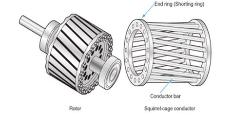 difference between squirrel cage and slip ring induction
