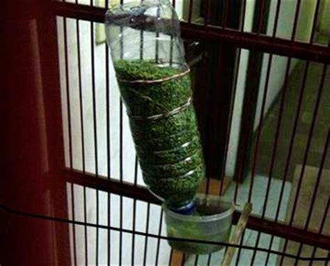 Tempat Makan Minum Burung Otomatis wadah pakan dan minum refill otomatis termurah untuk