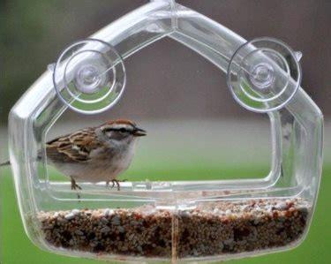 best window bird feeders mirror hummingbird in house