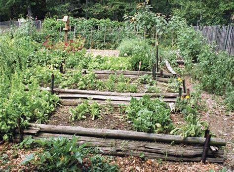Working Projcet: Rustic Vegetable Garden Ideas