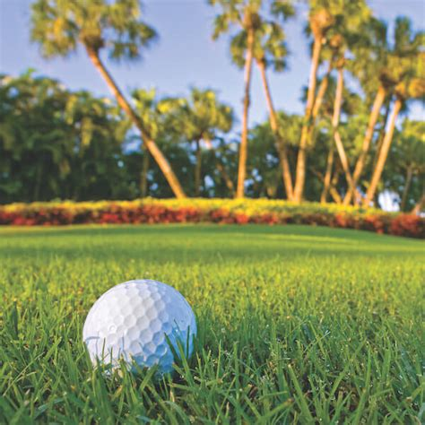 fort golf course coupons to the best golf courses in fort myers florida