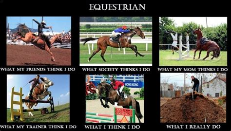 Horse Riding Meme - equestrian meme all thing horses pinterest
