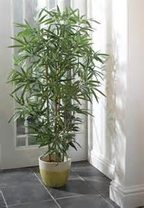 decorative trees for the home 1000 images about home decor artificial trees plants on artificial tree bamboo