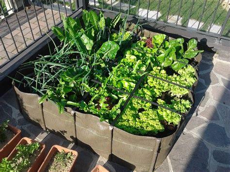 orto in terrazzo come fare come coltivare l orto sul terrazzo idee green