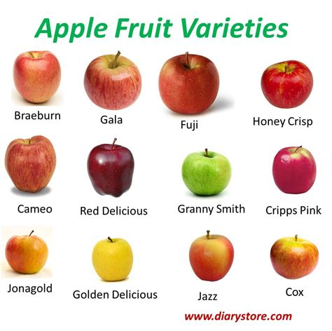 fruit nutrition facts apple fruit nutrition facts health benefits amazing