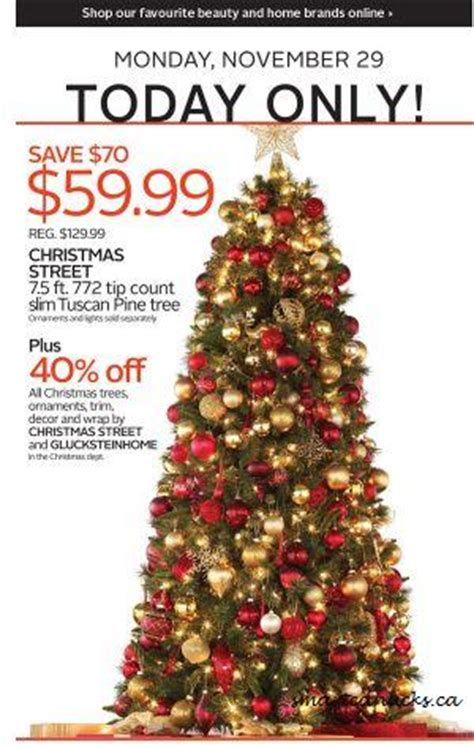 the bay 7 2 ft tuscan pine tree 59 99 40 off