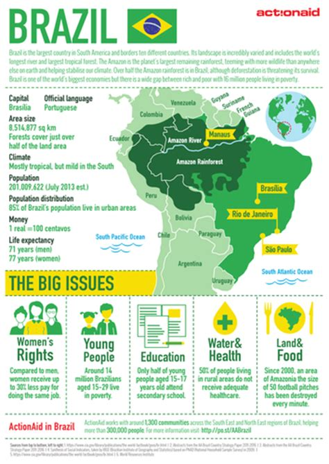 new year fact sheet ks1 and change in and the rainforest ks1 by