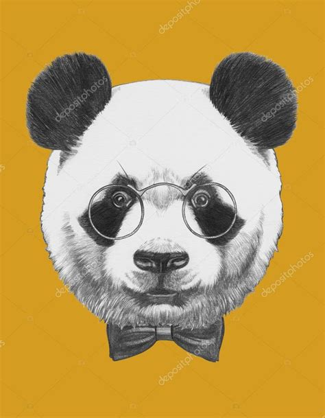 panda with glasses and bow tie stock photo 169