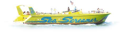 screamer boat sea screamer dolphin tours in clearwater guaranteed