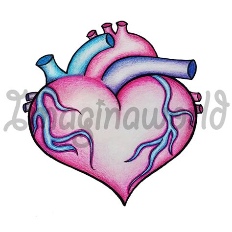 anatomical heart morph tattoo by imaginaworld on deviantart