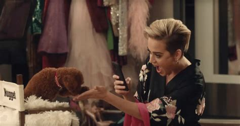 katy perry puppy katy perry s steals the spotlight in new commercial