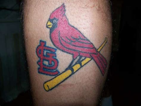 stl tattoo designs stl cardinals