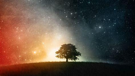cool tree stars los mejores fondos de pantalla hq 5 im 225 genes taringa