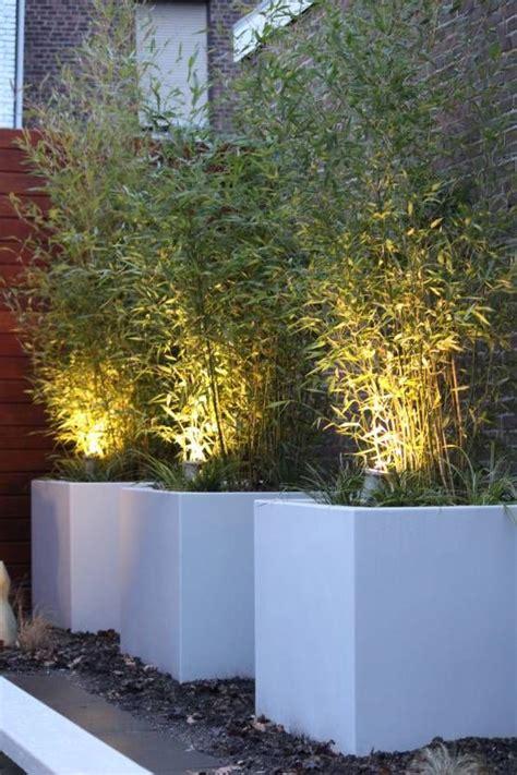 Led Verlichting Voor Planten by Stunning Excellent Planten Verlicht With Schutting