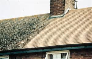 on a roof roof treatments flat roof waterproofing moss removal and more
