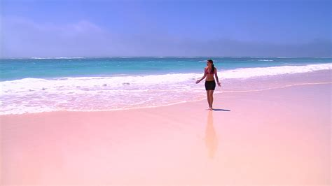 beach her colors were pink lots of pink with her love of the beach 17 most extraordinary beaches her beauty