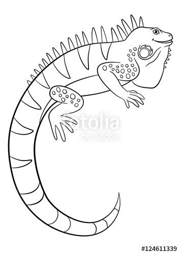 cute iguana coloring page quot coloring pages cute iguana smiles quot stockfotos und