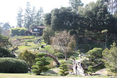 huntington botanical garden