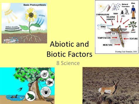 exle of biotic factors biotic vs abiotic worksheet abitlikethis