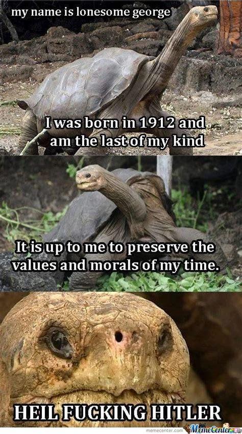 Wrong Hole Turtle Meme - old turtle by addisonyu meme center