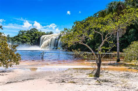 imagenes naturaleza venezuela bilder von venezuela canaima natur wasserfall park k 252 ste