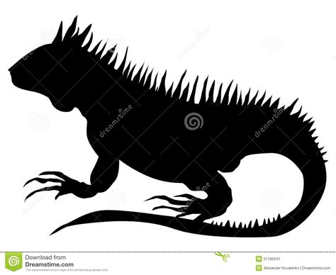 iguana stock vector illustration of amphibian animal