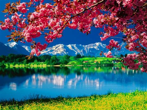 wallpaper 3d nature 1024x768 full hd beautiful 3d nature wallpapers beautiful pictures